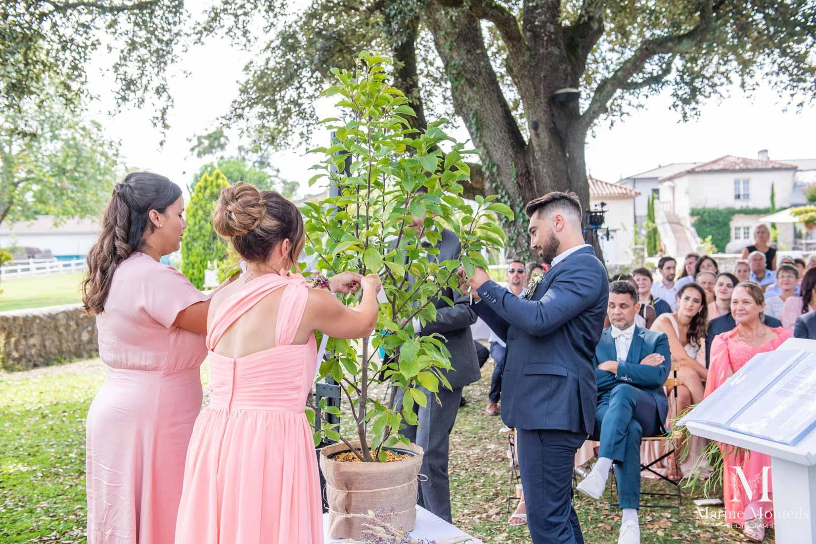 rituel arbre à voeux